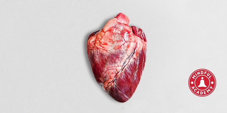 Mindfulness nedir?  Kalbinizi Nasıl Korur?